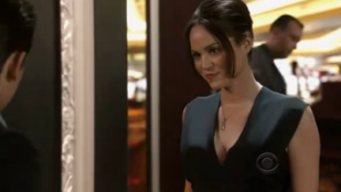CSI: Crime Scene Investigation 13x15 : Forget Me Not- Seriesaddict